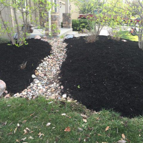 mulch or rock